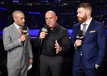 Paul Felder talks about Conor McGregor callout at UFC 246 by closed guard media (closedguardmedia.com)
